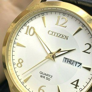 Citizen Men's Watch BF2003-25A Gold Dial Day Date